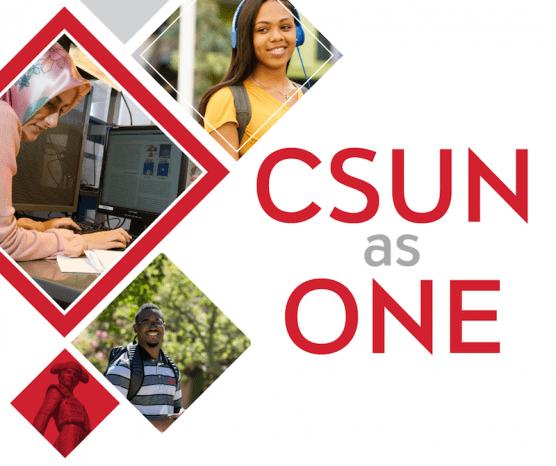 CSUN as One Website