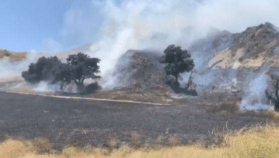Calgrove Fire