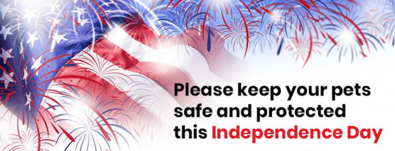 Keeping Pets Safe During 4th of July