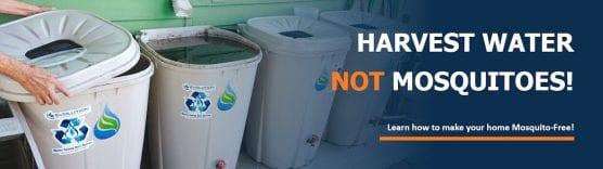 Harvest Water Not Mosquitoes