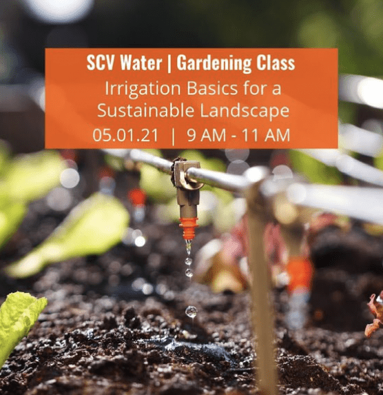 scv water gardening class irrigation basics