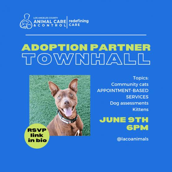 LA County Pet Adoption Town Hall